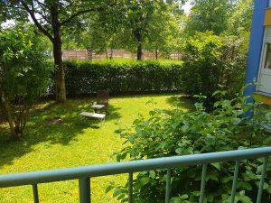 Traurig und leer: Mein Garten vor der Verwandlung